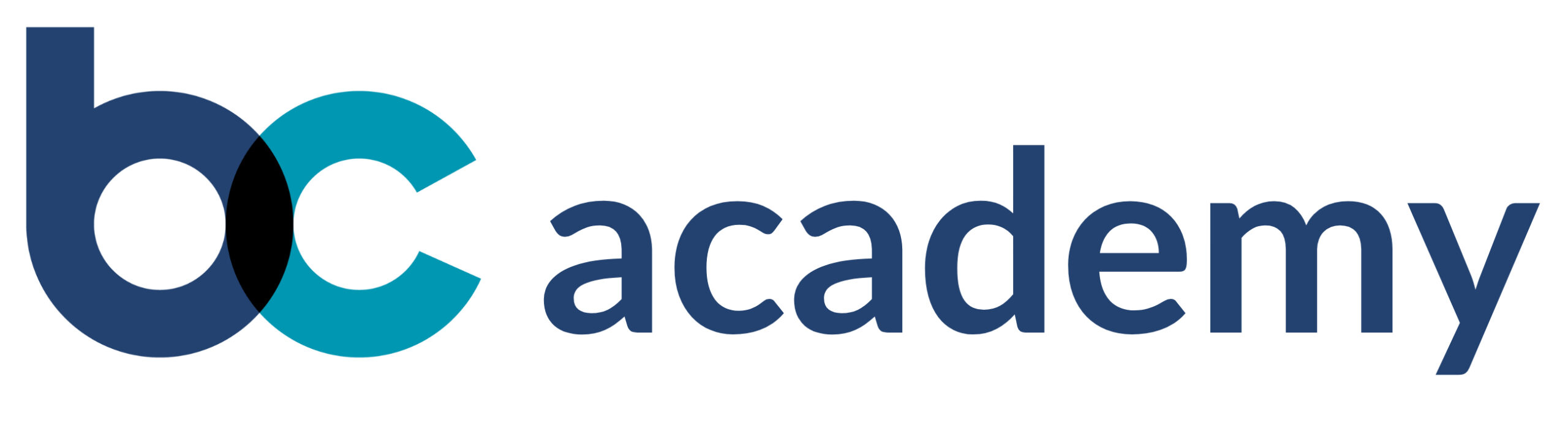 bc academy
